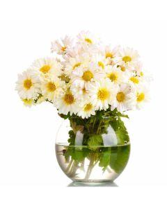 Floral Fantasy Daisy Bouquet