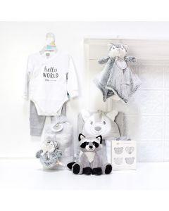Unisex Baby Fun Set, baby gift baskets, baby boy, baby gift, new parent, baby